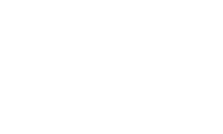 logo for ppl electric